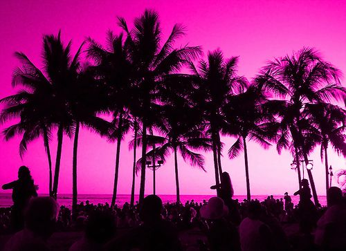 Things that are pink, beautiful sunset