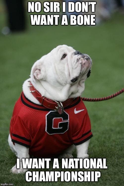 Georgia Bulldog Memes : georgia, bulldog, memes, UGA!!, Georgia, Bulldogs, Football,, Bulldogs,, Bulldog