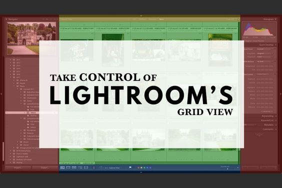 Lightroom grid view