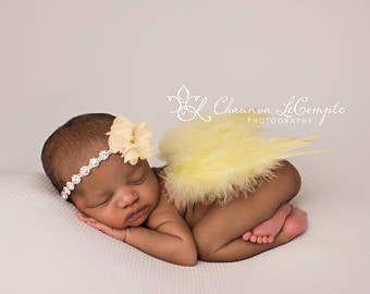 Brown Baby Wings