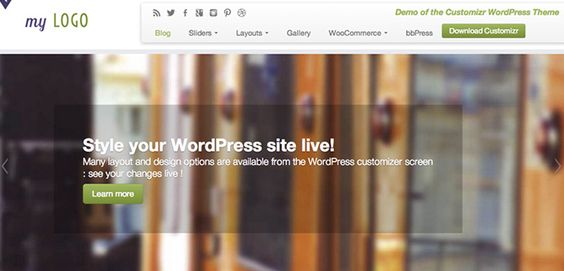 Customizr Wordpress Theme