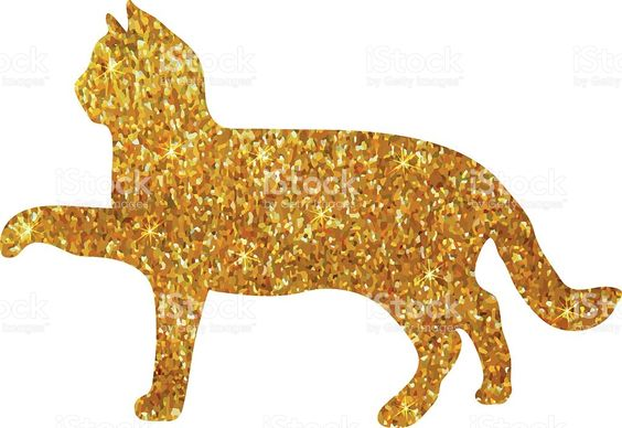 Image result for gold cat