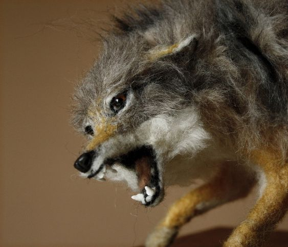 Fighting Coyote felted sculpture by Minzoo Needle Felting.