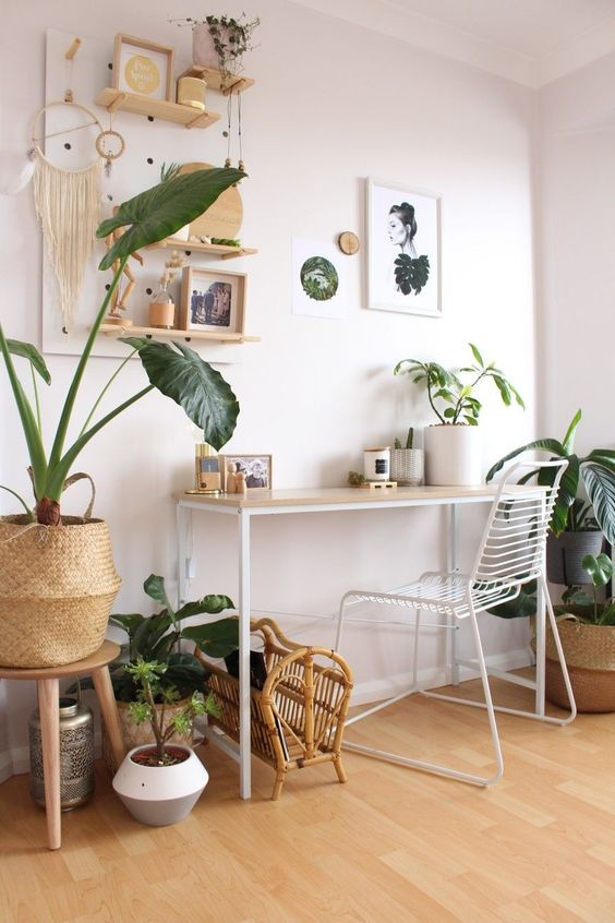 deco bureau tendance urban jungle plantes