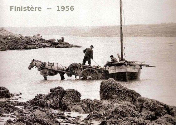 59_1956_finistere