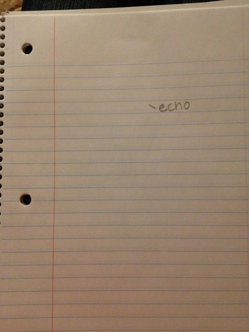 Drawing of Echo - not cooooooooooooool<<< only percy jackson fans will understand
