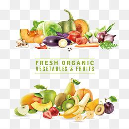 Vegetables And Fruits Fresh Distribution Nature Vector Pattern Can Modify Fresh Food Distribution Vegetables Vector Fruits Vector Fres Fruit Vector Fruit Fresh