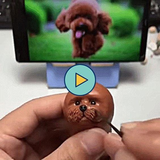 Cachorro no celular