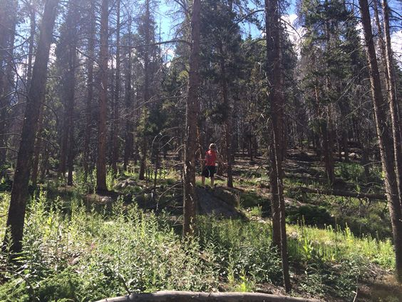Boyfriends little bro, Rocky Mountain national park