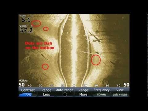 Side Imaging And Down Scan Structure Scan Sonar How To