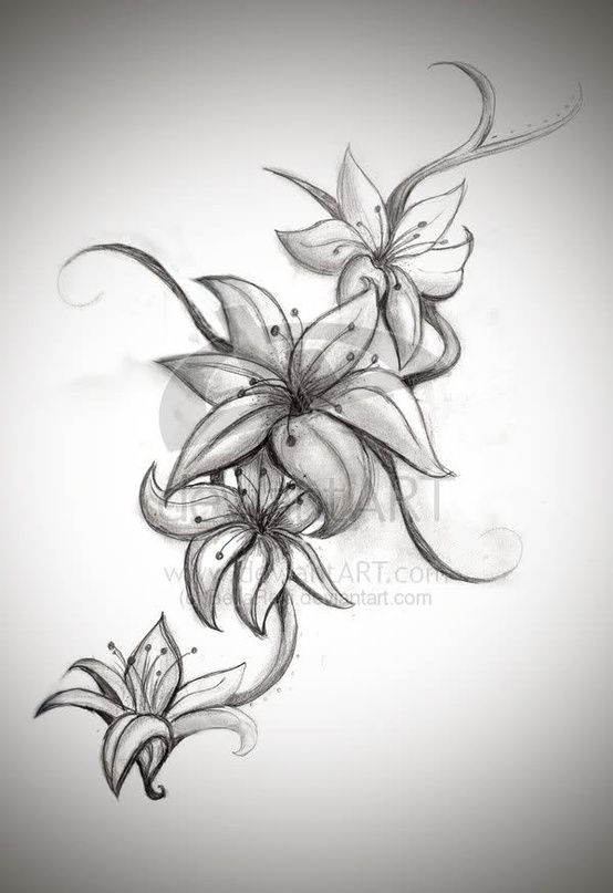 Lily Flower Tattoo Design - Click image to find more Art Pinterest pins