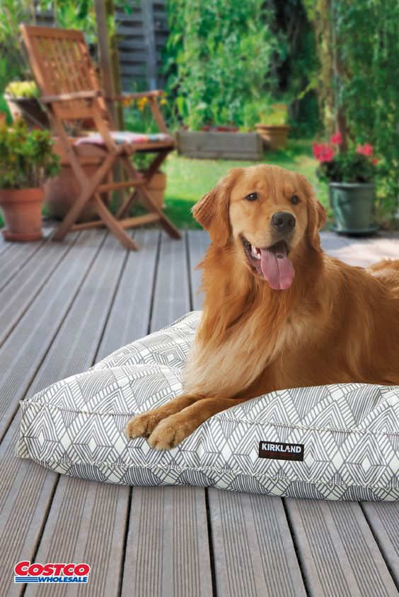 Kirkland Signature 40 Square Tufted Indoor Outdoor Pet Napper Pattern Outdoor Dog Bed Happy Dogs Pets