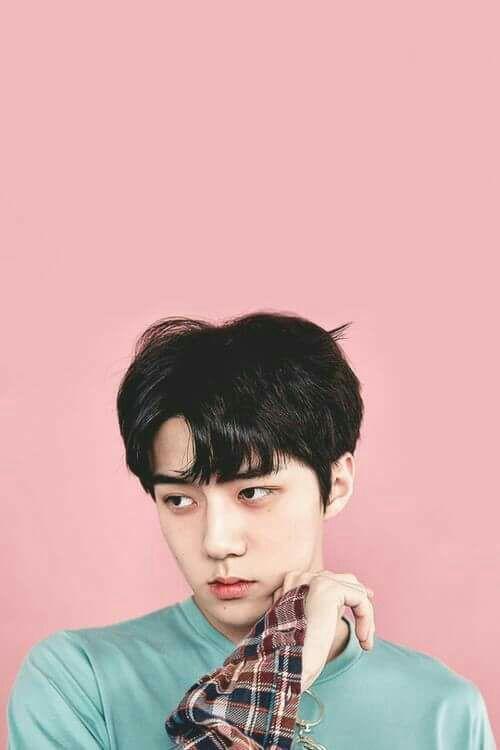 11+ Exo Sehun Cute Photos Gif