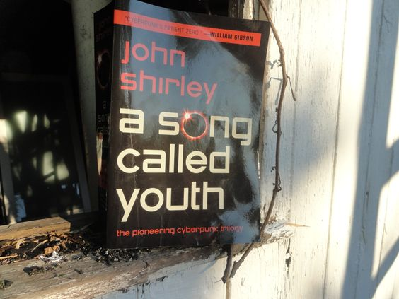 a song called youth by john shirley. i'm still reading this one, but so far, love it!     http://www.barnesandnoble.com/w/a-song-called-youth-john-shirley/1110840838?ean=9781607013303