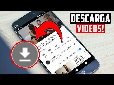 Descargar Videos Infantiles Youtube En 2020 Descargar Video
