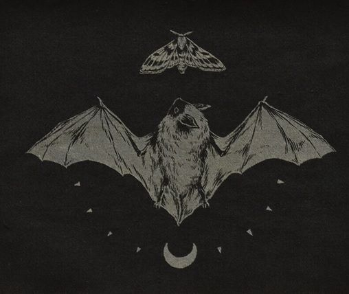 Teagan white screenprinted bat moth patch the belfry for Bat moon tattoo