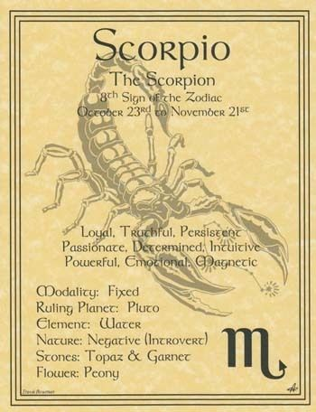 SCORPIO ZODIAC POSTER  Wicca Pagan Witch Witchcraft BOOK OF SHADOWS Astrology picclick.com: