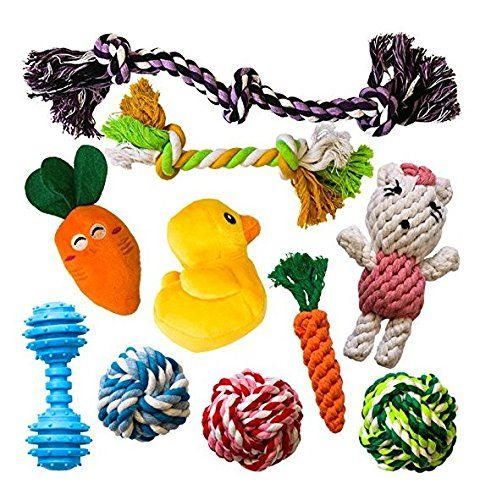 Amzpets 10 Most Popular Dog Toys For Small Dogs Puppies Squeaky