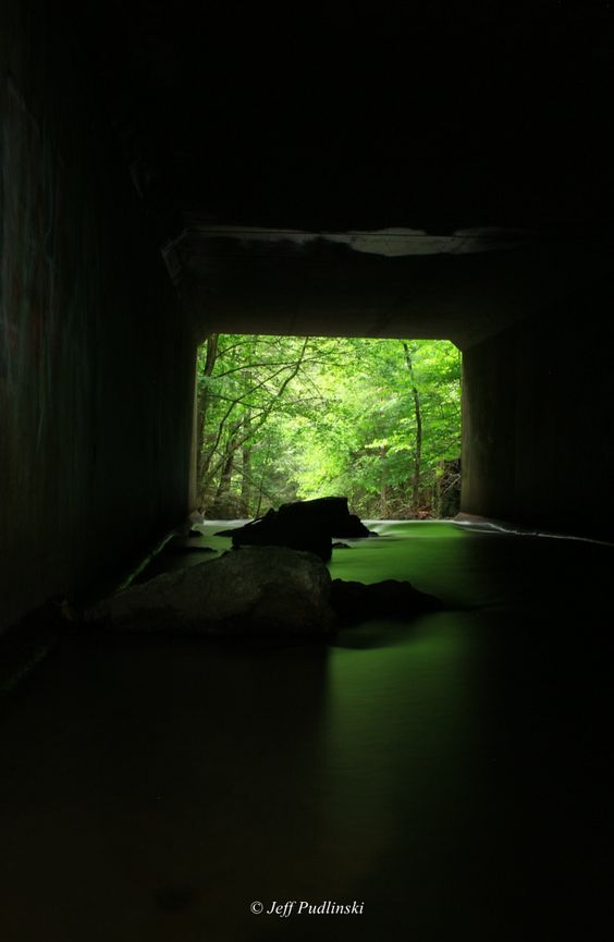 Photograph Down the Green Tunnel by Jeff Pudlinski
