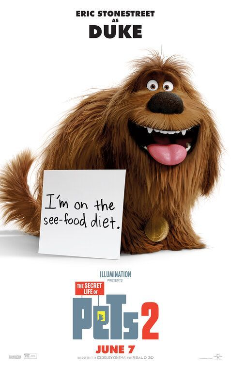 Secret Life Of Pets Poster Collection 40 High Quality Posters Secret Life Of Pets Secret Life Pets