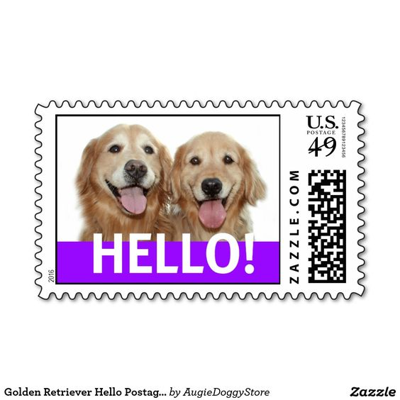 Golden Retriever Hello Postage Stamp Zazzle Com Dogs Golden