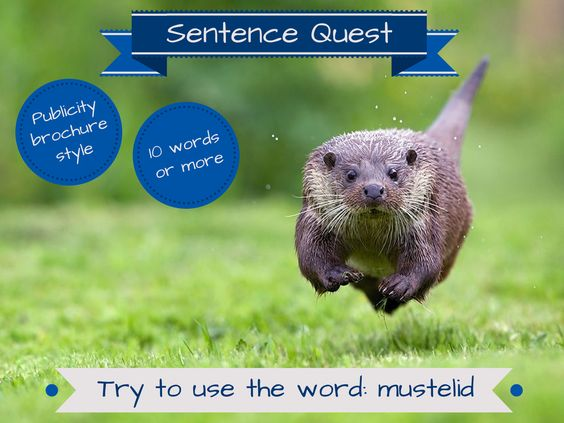 Try to write a sentence using the image and prompts