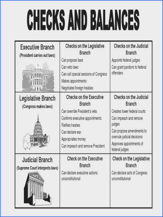 Our Courts The Legislative Branch Worksheet Teaching Government