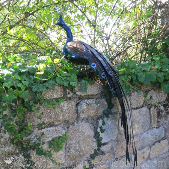 Paon grandeur nature sculpture en metal recycle for Deco jardin oiseau metal