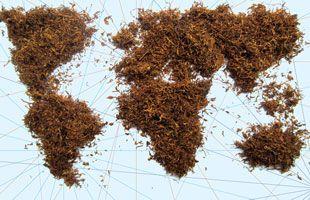 OMS | Día Mundial Sin Tabaco 2016
