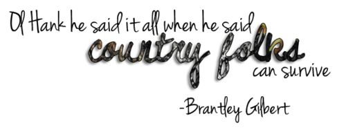 Country Must Be Country Wide lyrics