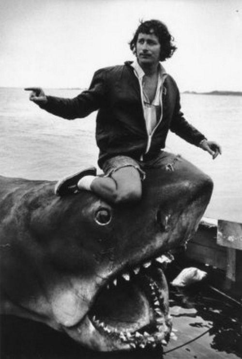 steven spielberg on the set of jaws film pinterest