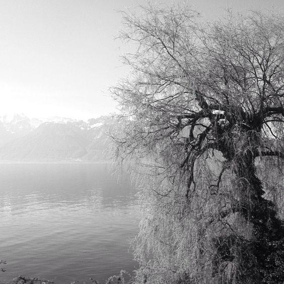 Leman Lake - Switzerland - Photo by yannbros - www.spiralps.ch