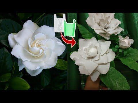 Diy Cara Membuat Bunga Pecah Piring Gardenia Dari Plastik Kresek Gardenia Flower From Plastic Bag Youtube Ide Kerajinan Bunga Gardenia