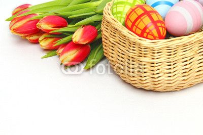 easter-egg basket and tulips - Osterkorb und Tulpen