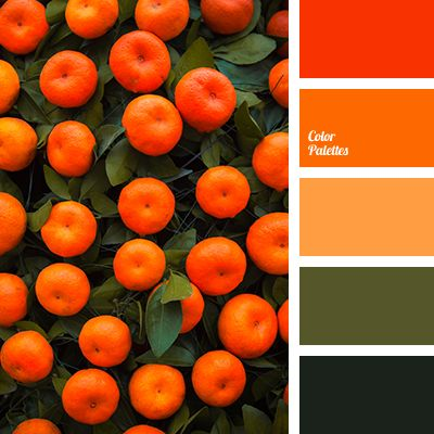 Bright orange color color matching in interior color of for What color matches with red
