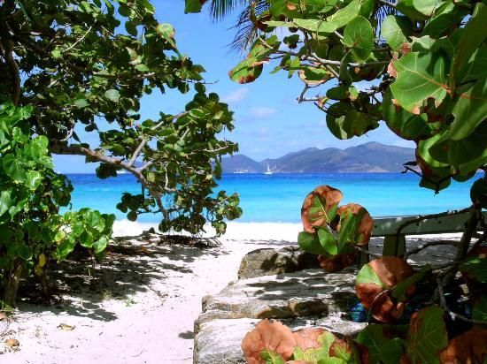 Smuggler's Cove-Tortola, BVI....BEST PLACE ON EARTH!