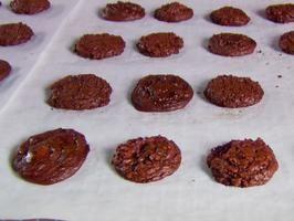 Chocapocalypse Cookie