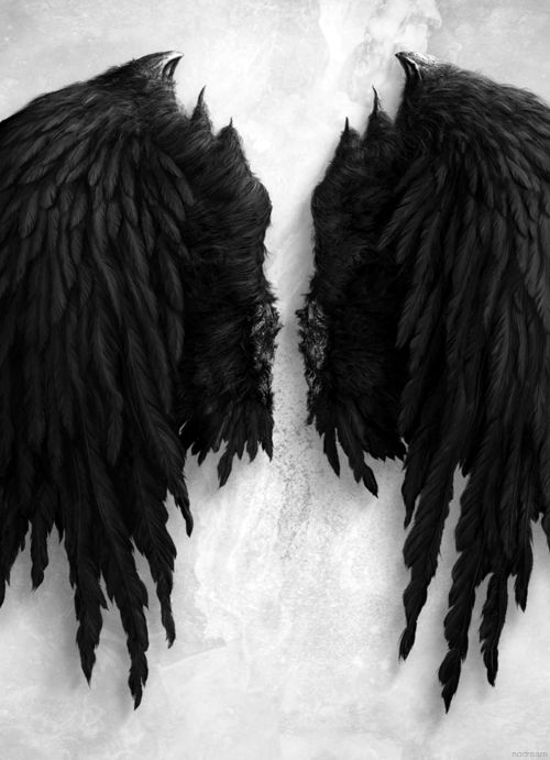 """You sound like an angel who's gotten her wings dirty ..."