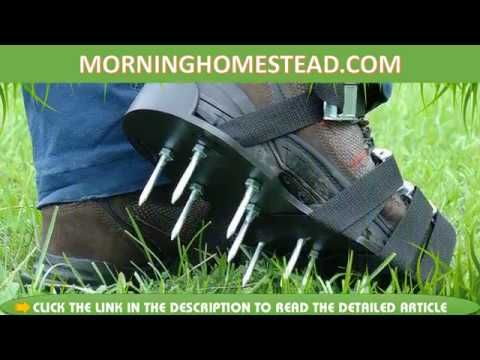 Top 5 Best Manual Lawn Aerators For The Money Aerate Lawn Lawn Care Tips Lawn Care Diy