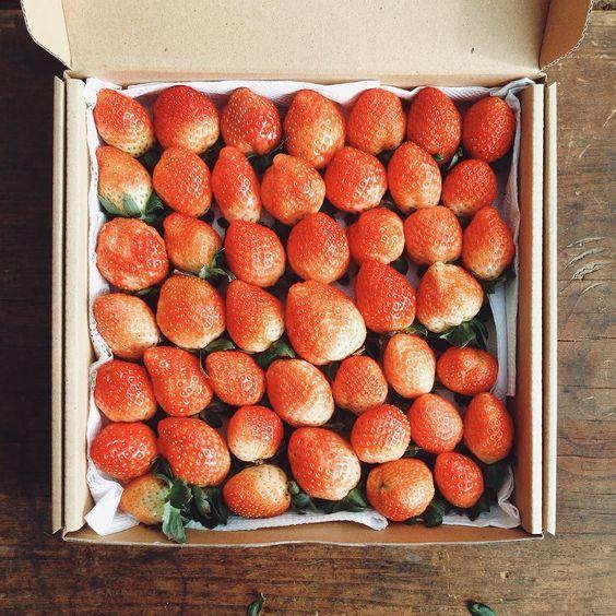 #strawberries #green #clean #food #healthy #omg #so #yummy #fresh #vietnam #juice #strawberry