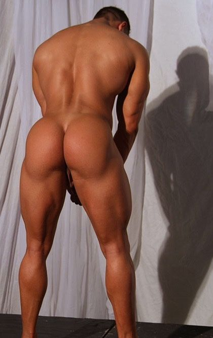 MALE ASSETS
