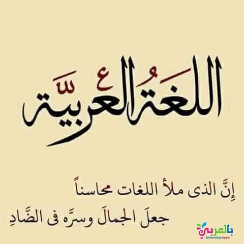 عبارات عن اللغة العربية جاهزة للطباعة خلفيات عن اللغة العربية بالعربي نتعلم Alphabet Letters With Words Arabic Alphabet For Kids Learn Arabic Alphabet