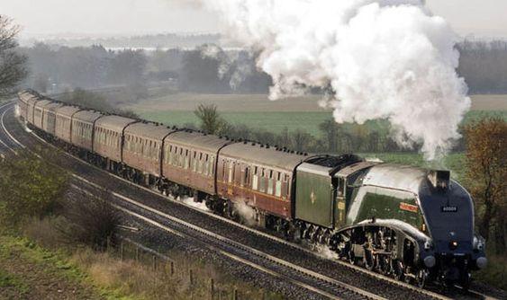 A steam train travels through the countryside: