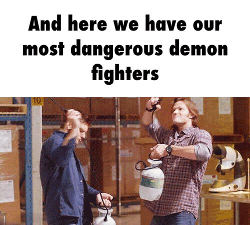 And here we have our most dangerous demon fighters  GIF