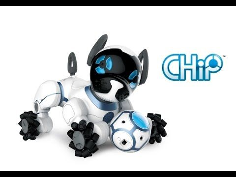 CHiP: The World's First Lovable Robot Dog