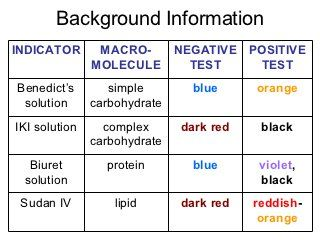 biological macromolecules post lab Macromolecular biochemistry is the study of large, polymeric, biological molecules including carbohydrates, lipids, nucleic acids, and proteins.