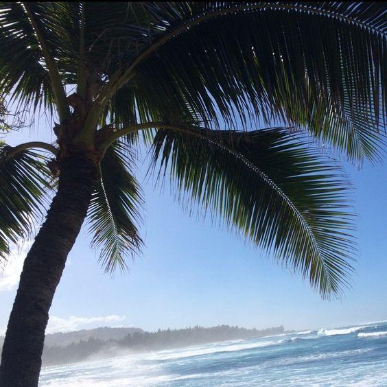"""""""✌️Mahalo✌️ Postcard from Hawaii! @billabong @billabongwomens #billabongpipemasters  cc: @rachelbesser"""""""