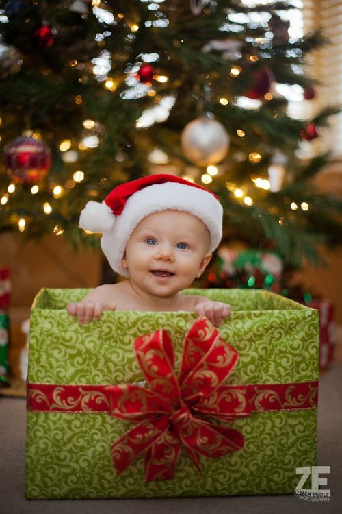 Image result for baby hiding in christmas tree