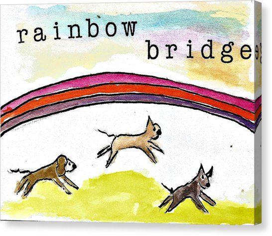 Image result for rainbow bridge boxer