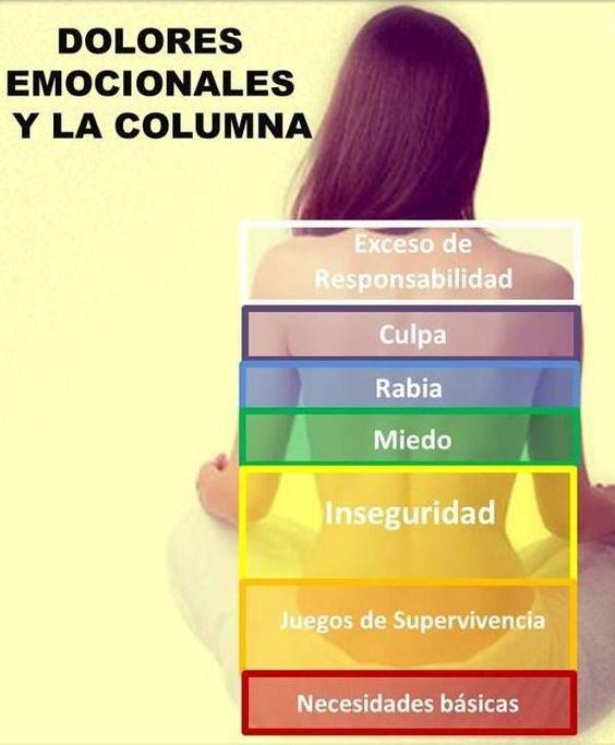 Salud, un Nuevo Estilo de Vida.: Dolores Emocionales y la Columna.: